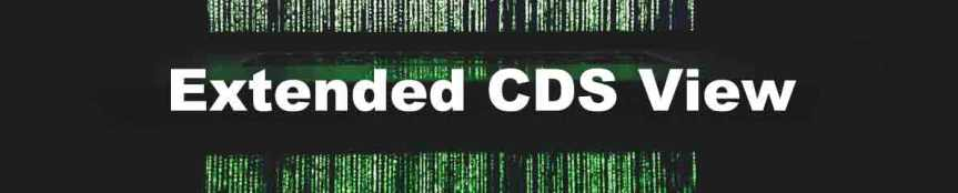Extended CDS View